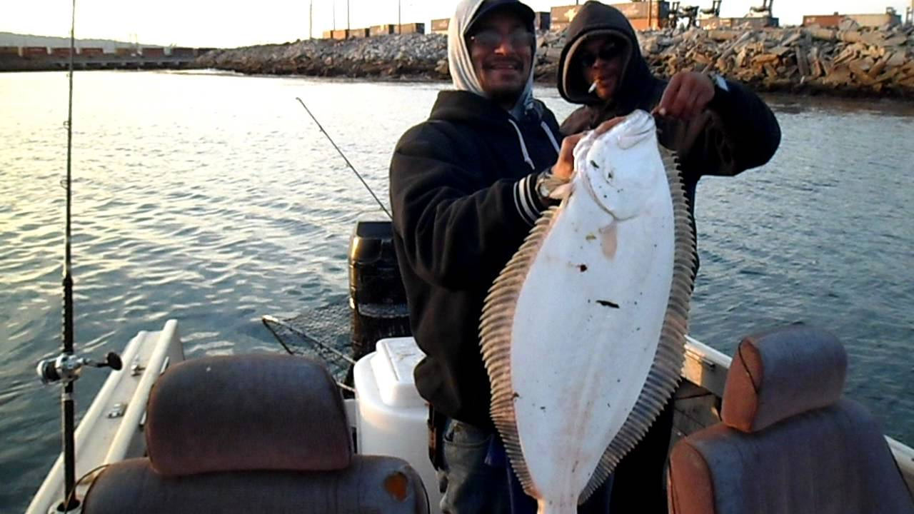 Catch One Halibut Out Of Long Beach Ca