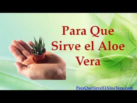 Para Que Sirve el Aloe Vera - YouTube