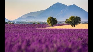 Прованс I Лучшие путешествия I Европа с Руди Макса