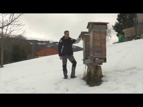 André Wermelinger -   Warré Bienenhaltung in der Schweiz