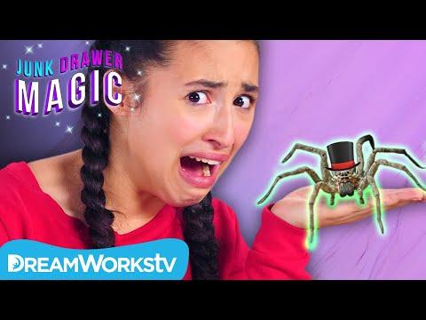 Pet Spider | JUNK DRAWER MAGIC