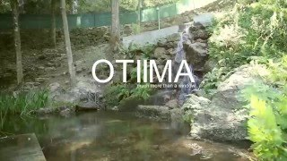 OTIIMA Much more than a window