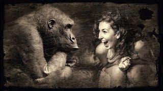 Как стать успешным. Животные внутри тебя. Гипноз онлайн с Анной Норд.