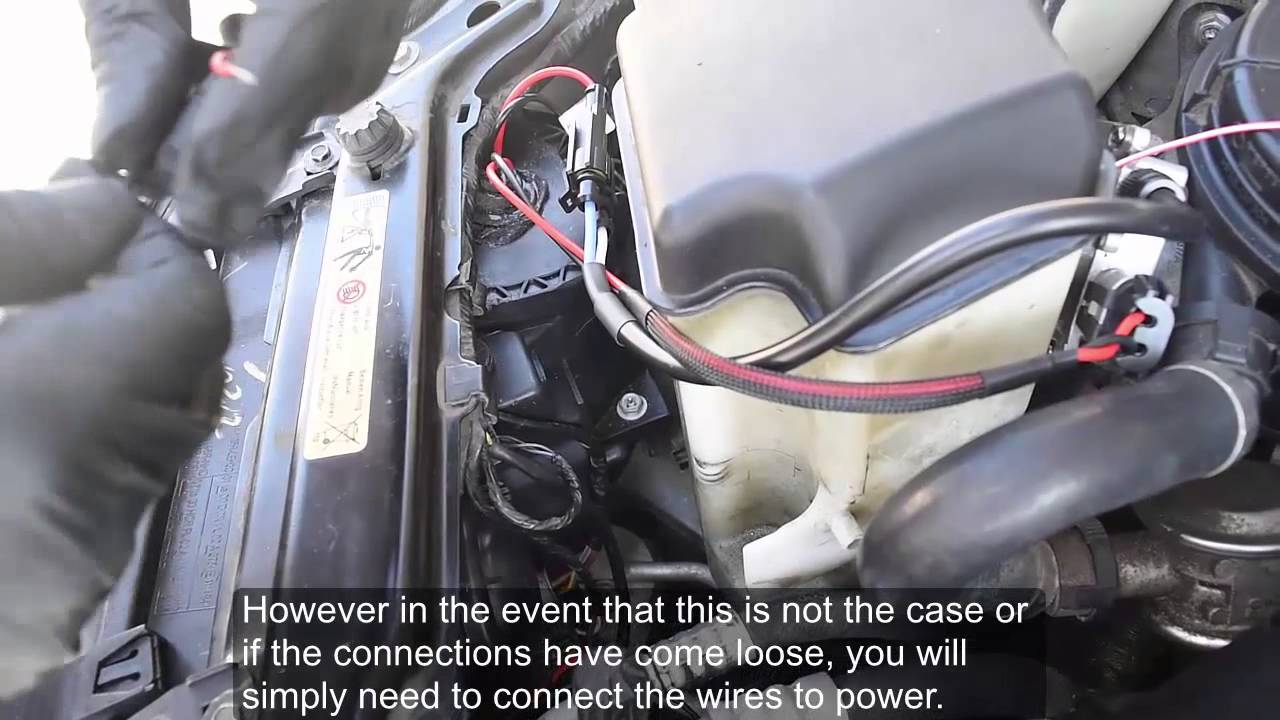 small resolution of angel eye wiring harness installation