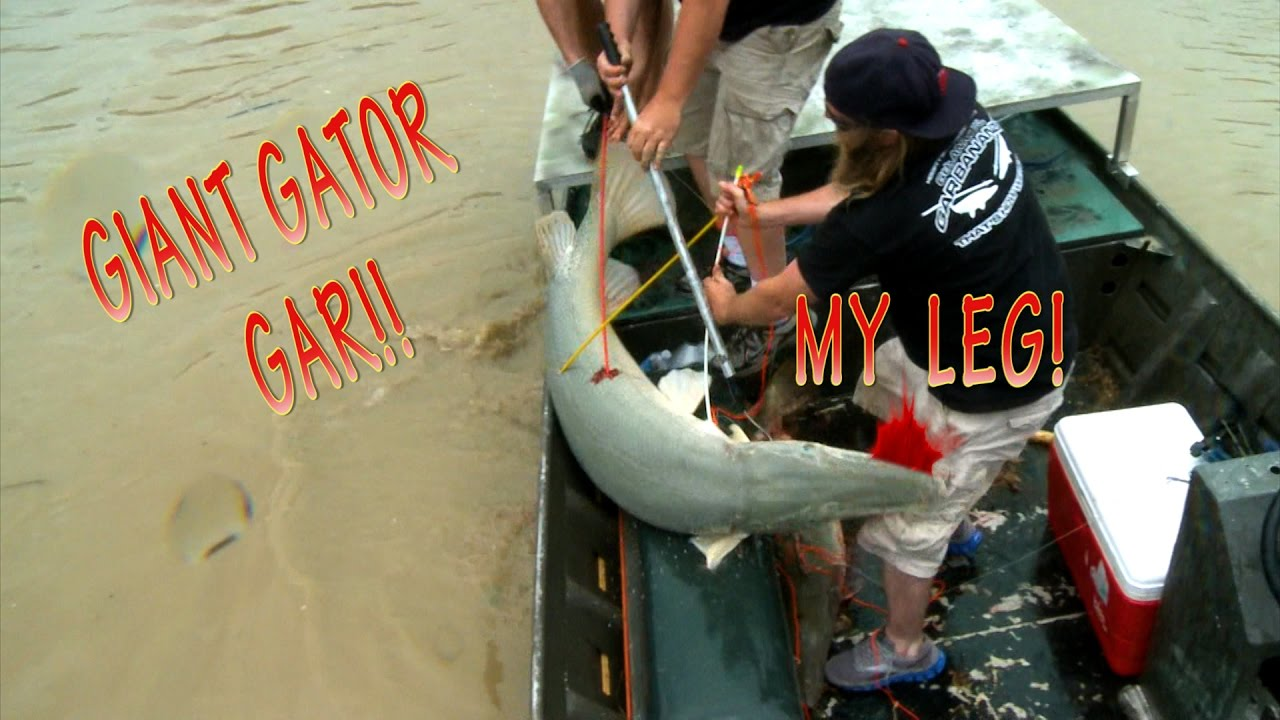 the misconceptions about the art of bowfishing