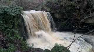 Falls at Highcliffe Waters, Winston Co Durham