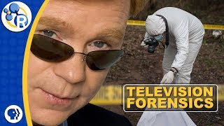 TV Forensics: What Do CSIs Actually Do?