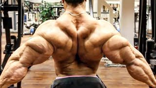 The Best Triceps In Bodybuilding - Arm Day Workout