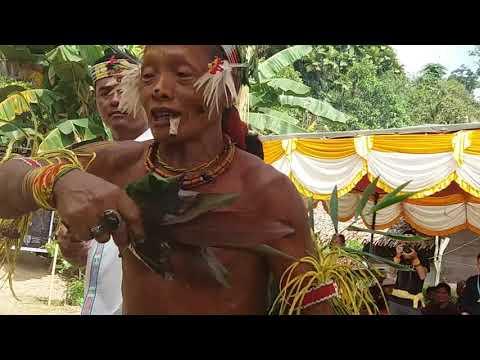 Tarian Sikerei Di Mentawai