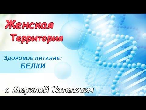 Общий белок в крови: норма, причины повышенния или