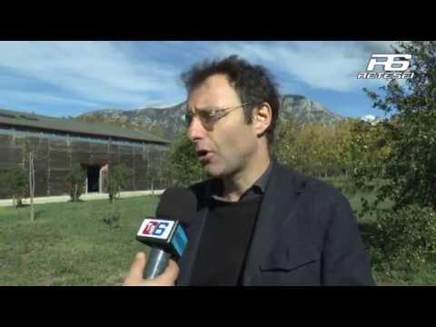 Marco Tonelli direttore