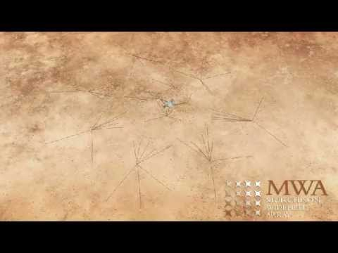 The guided fly-through tour of the Murchison Widefield Array