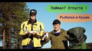 Рыбалка в Кушве -  Поймал? Отпусти!