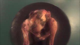 Herb Roasted Cornish Game Hens! Video Recipe!