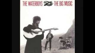 Watch Waterboys The Earth Only Endures video