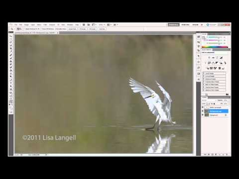 EASY Watermark & Copyright symbol on photos & metadata:  Online or Photoshop CS5