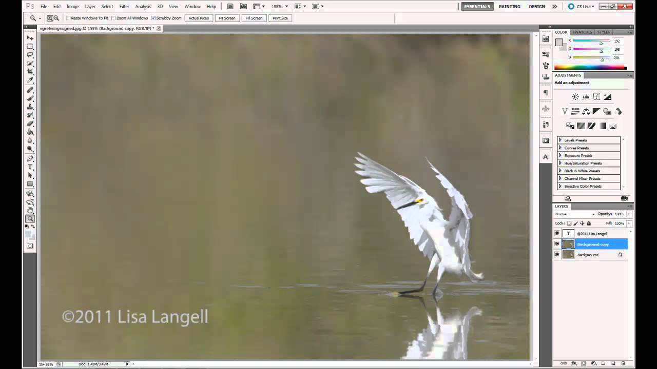 Easy watermark copyright symbol on photos metadata for Best online photo gallery