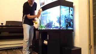Еженедельный уход за аквариумом, чистка, уборка, подмена воды