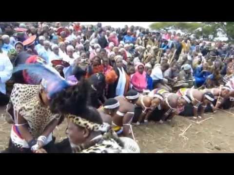 Mchunu royal wedding