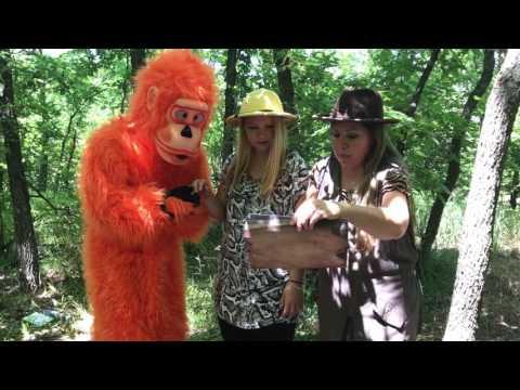 Indiana Joan & The Hidden Treasure / Wednesday