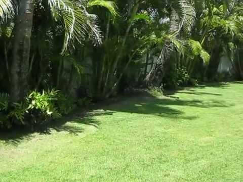 OUR LITTLE SLICE OF PARADISE IN KAILUA, OAHU, HAWAII - A stroll through our back yard
