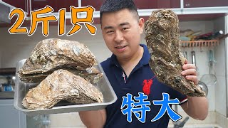 5 Massive Oysters With Spicy Noodles 【Chef Chao】