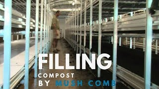 Mushroom farm filling of compost with basic mushroom machinery.