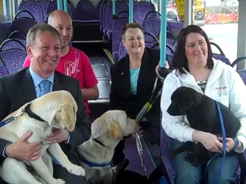 Free travel for guide dogs and handles in Aberdeen