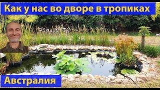 Вышел утром на крыльцо... Новоселье, мой двор, Four Years Later. (видео 489)