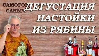 НАСТОЙКА НА РЯБИНЕ. Результат ДЕГУСТАЦИИ / Рецепты настоек /Самогон Саныч
