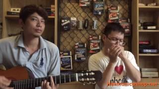 Lemon Tree (lý cây chanh - dân ca Mỹ) - Harmonica covered by Nghi Lăng !!!!