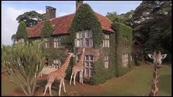 Giraffe Manor 2015