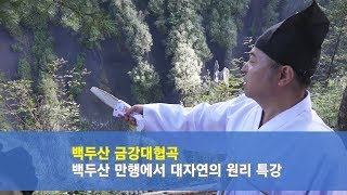 [도원(道圓)대학당 강의] 523 사주 오행의 원리 아는법