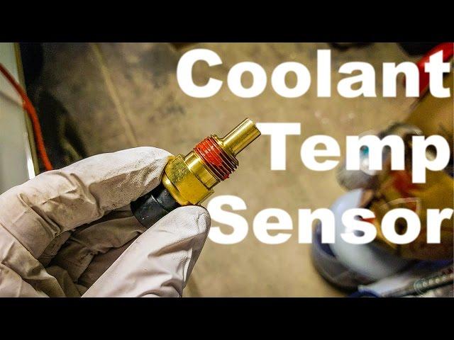 AC-DELCO 12643002 Sensor ASM-Fuel