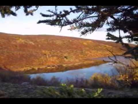 Caribou Hunt Highlights 2010