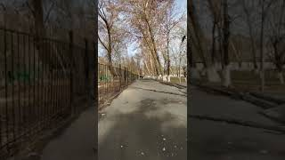 Osh Park Toktogul - Ош парк Токтогул, Ак-Буура