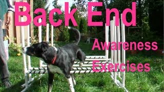 22 Rear End Awareness Exercises For Dogs In Agility, Freestyle, Rally Obedience Etc.