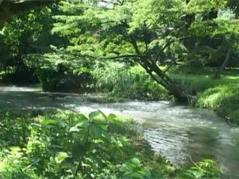 Limbe botanic garden youtube for Botanic com jardin