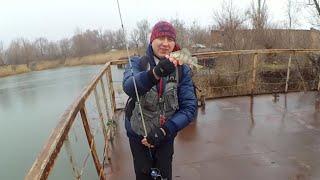 Базы отдыха Ростовской области: цены 2018, бронирование ...