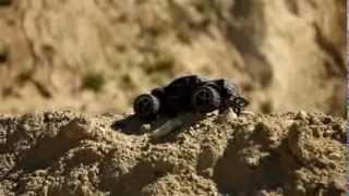 Видео №6 от Павла Романова