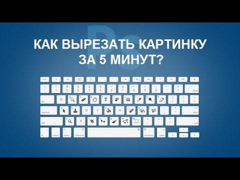 Как вырезать картинку за 5 минут. Фотошоп онлайн.