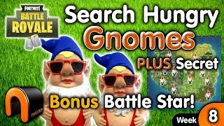 Search Hungry Gnomes Locations FORTNITE Week 8 Challenge