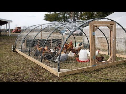 Tavuklar ve Kümesler İçin HARİKA Öneriler TOP30