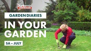 Gardening in July | SA | Bunnings Garden Diary