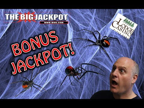🎰 Bonus Jackpot On The Black Widow Slot Machine! 💣