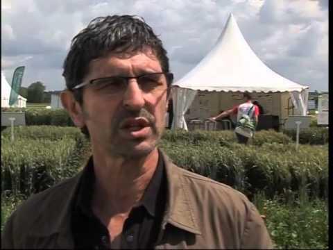 La filière Bio en quête de nouveaux producteurs - ARVALIS-infos.fr