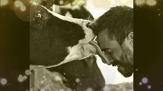 Why cows should be protected (HARE KRISHNA BHAJAN)