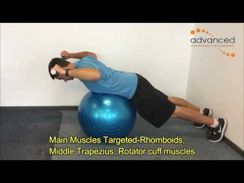 SHOULDER EXERCISES Prone Ex ball 90:90 Retraction and External Rotation