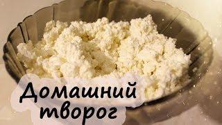 Домашний ТВОРОГ - рецепт