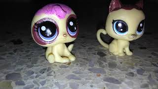 Spending a round and Jake say we scary,lps fun video 19